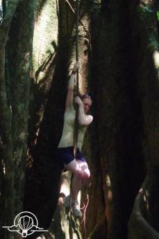 vine climbing take 2