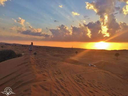 Desert safari (1)