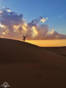 Desert safari (11)