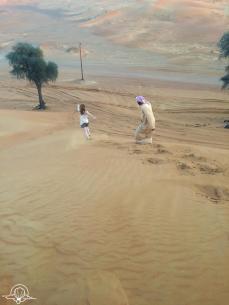 Desert safari (9)